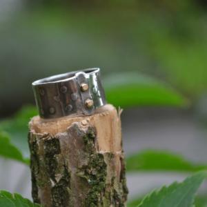Zilveren (geoxideerde) ring met stip en goud