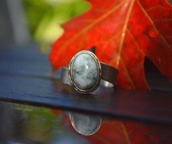 asymmetrische ring met boomagaat