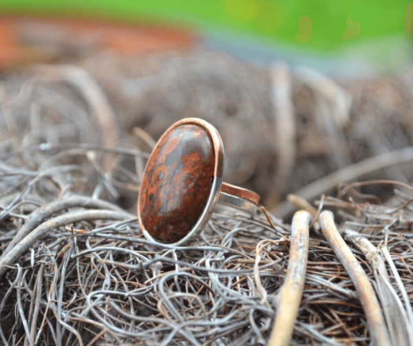 Handgemaakte ring met tijgerjaspis