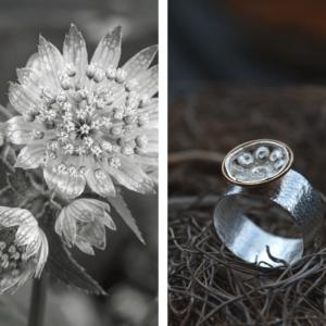 Ring van zilver met Goese knoop