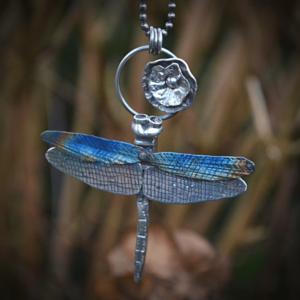 Libelle van zilver en titanium