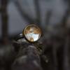 Ring-Make-a-Wish-zilver-Handgemaakt-met-echte-zaadjes-van-paardenbloem